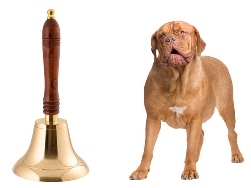 A bell and a dog. Pavlovian response for climbers.
