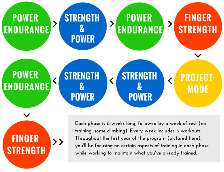 phases of training Three phases of fitness if your goal is to improve your muscle mass, plan to progressively challenge the body by using three distinct phases of training.