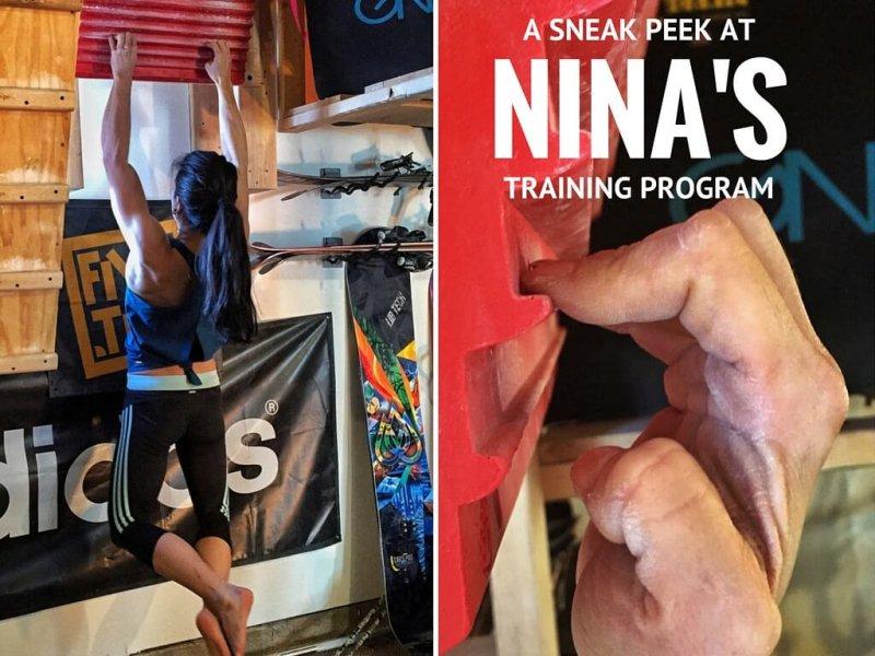 nina williams training