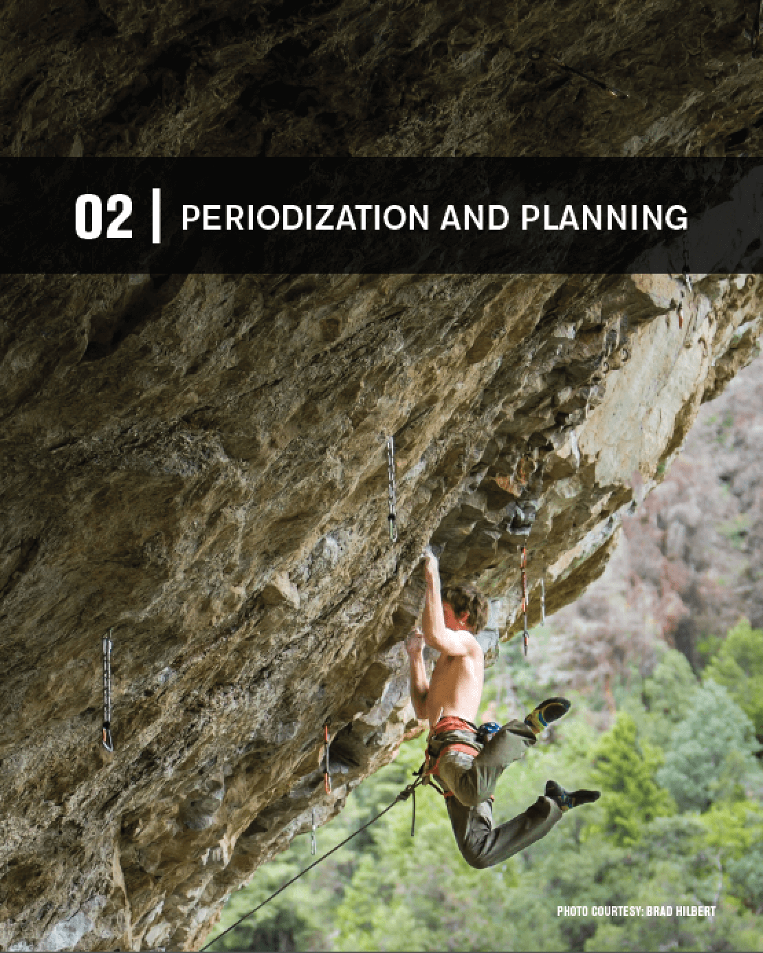 periodization and planning