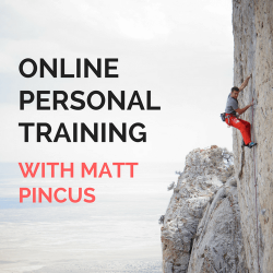 product image for Matt Pincus online training