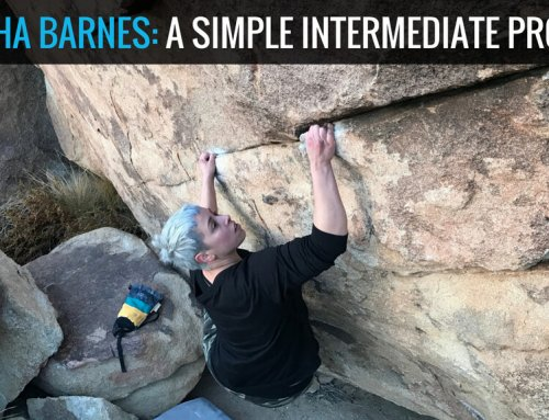 Natasha Barnes: A Simple Intermediate Program