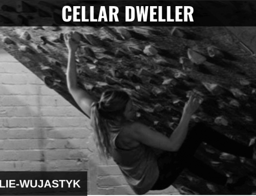 Mina Leslie-Wujastyk: Cellar Training Culture in the UK